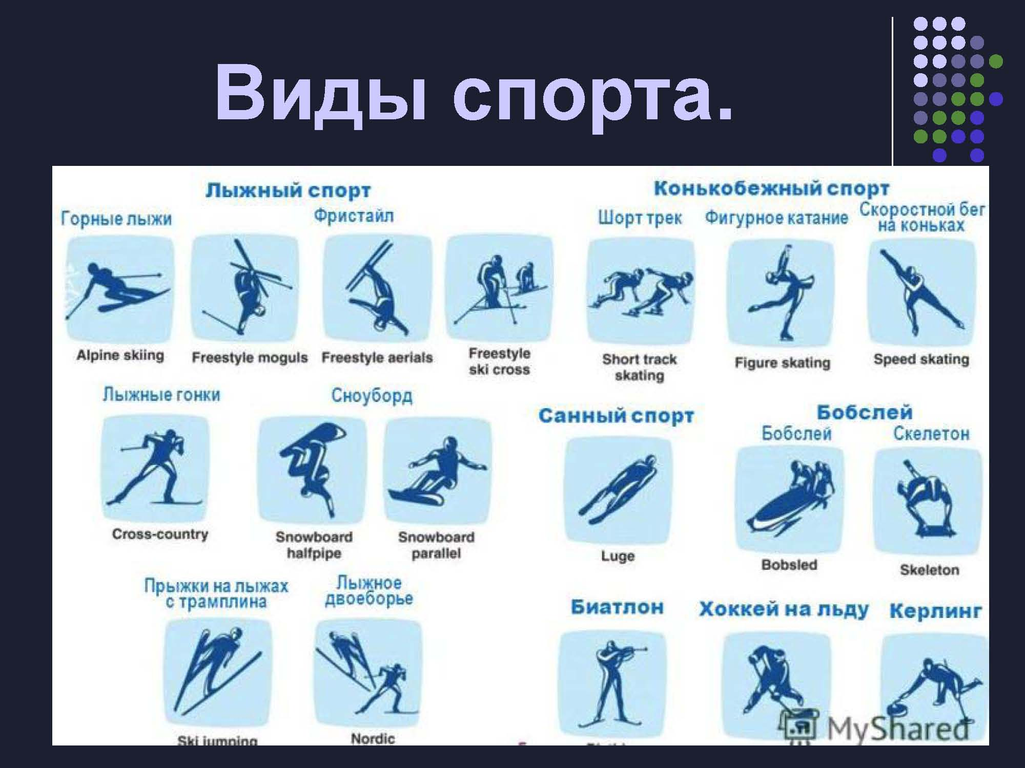 Зимние виды спорт картинки 5